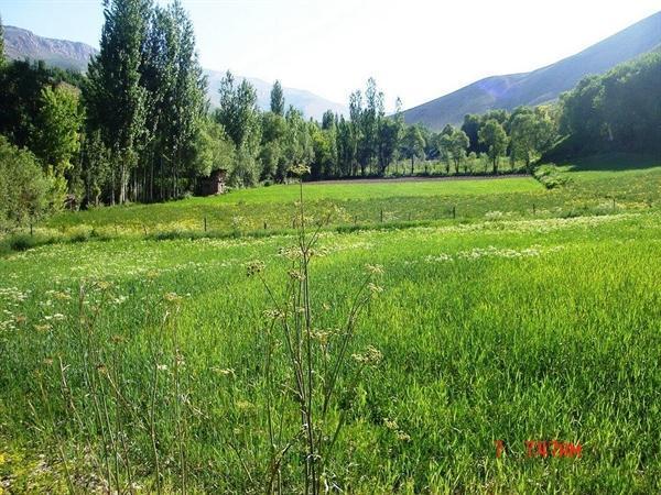 طرح روستاگردی بهاری در نوروز 98 اجرا می گردد