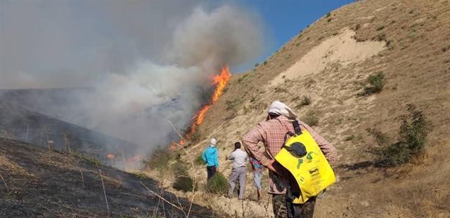 آتش سوزی در خالد نبی صدمه ای به گورستان تاریخی وارد نکرده است