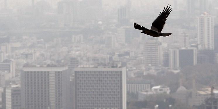 مهار گازهای گلخانه ای با کاهش آلودگی
