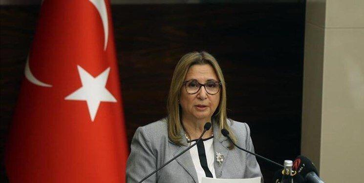 ترکیه گذرگاه های زمینی با ایران و عراق را بازگشایی کرد